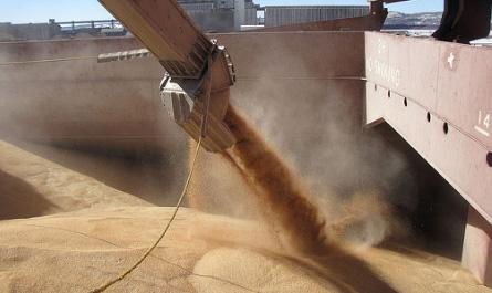 Экспорт пшеницы из России