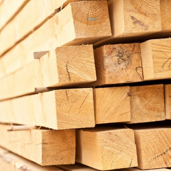 Lumber in Russia and for Export. Timber