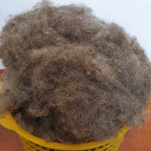 Sheep wool for export from Russia (grey)