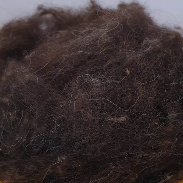 Sheep wool for export from Russia (dark)