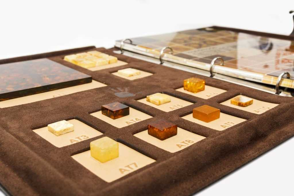 Folder with amber samples for demonstration