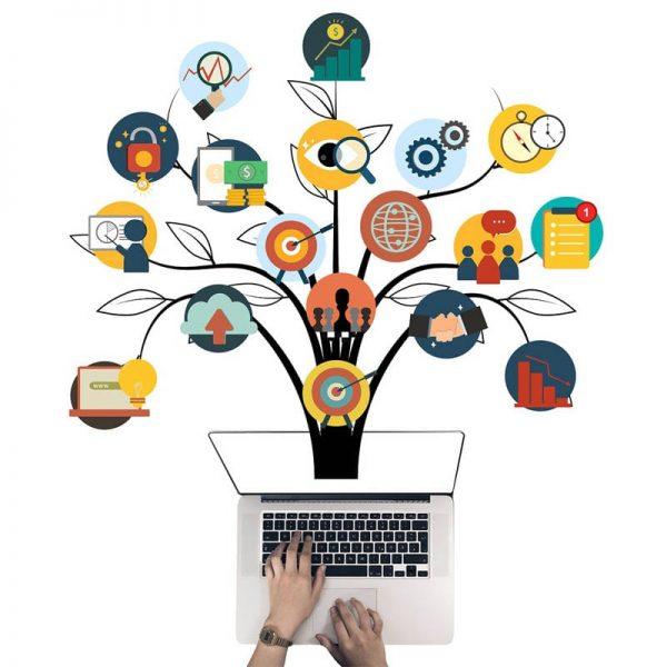 Маркетинг, брендинг и online-продажи c ProValue Industry